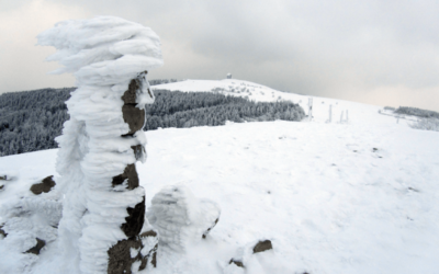 Winterwandern in der Rhön