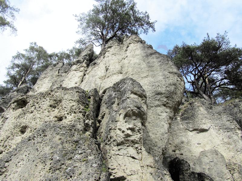 mittlerer Bereich im Klettergarten