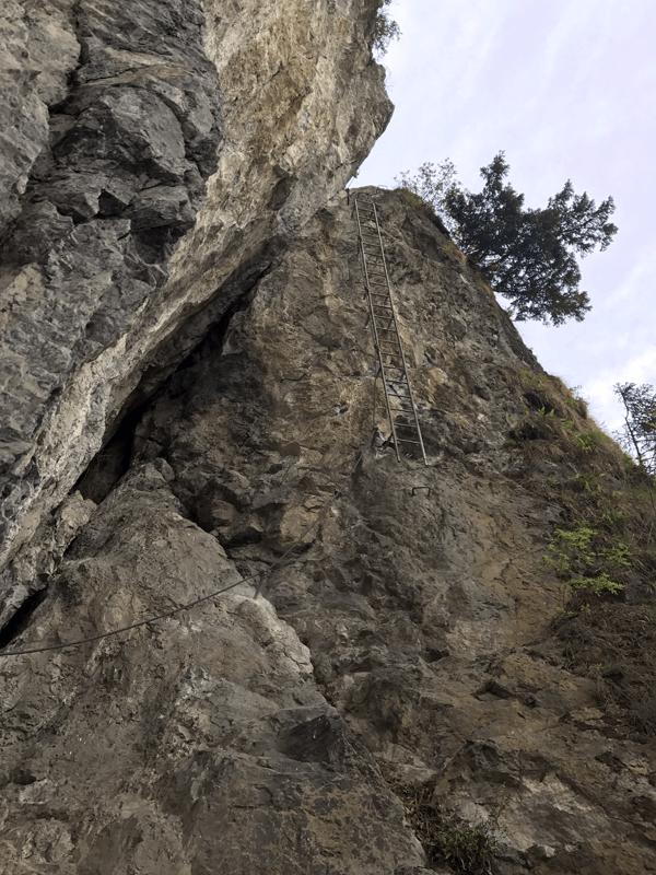 Leiter im leichten Bereich des Klettersteigs