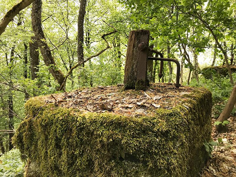 rostige Überbleibsel mitten im Wald