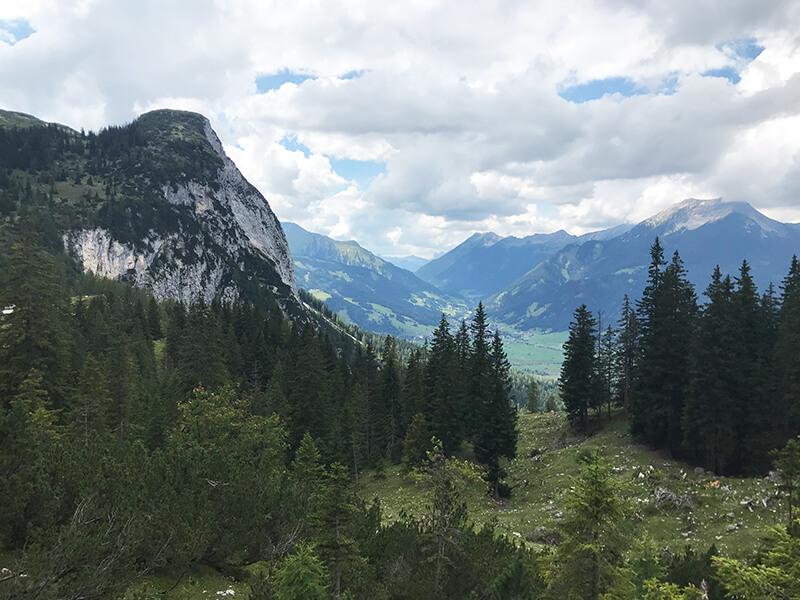Blick ins Tal zwischen Tannen hindurch
