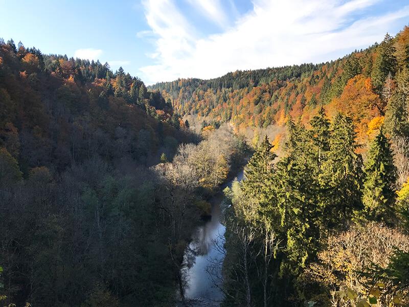 tiefe Schlucht umringt von Bäumen im Herbstkleid