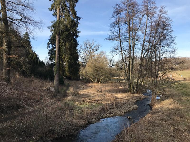 Bachlauf unterhalb vom Schloss Eisenbach