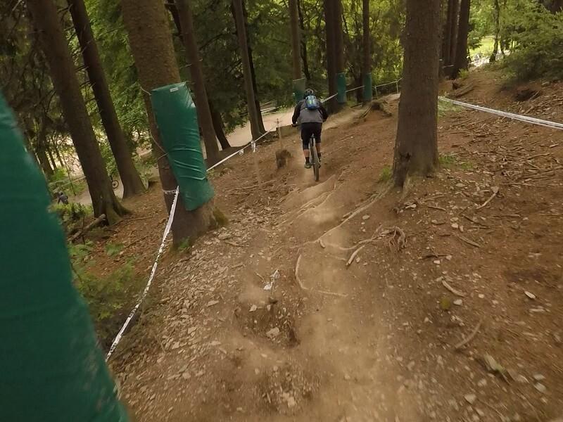 gepolsterte Bäume und Wurzelm auf der IXS Downhill Strecke