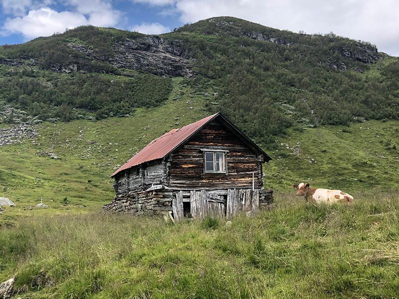 Bergtour zum Bergsee Mykjedalsvatnet