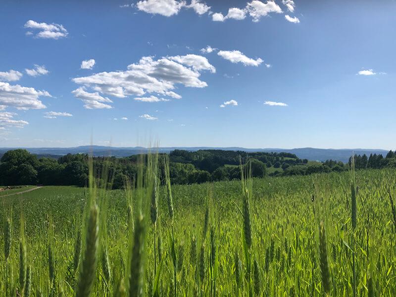 Süd-Thüringens schönste Aussicht