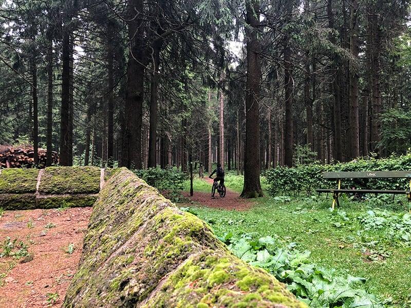 Trail an der Herchenhainer Höhe