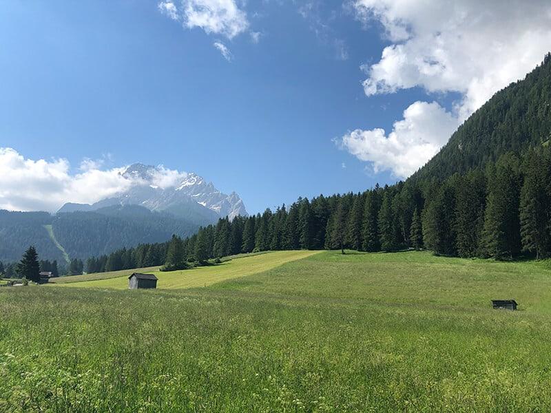 Blick über Almwiesen zur Sextner Rotwand