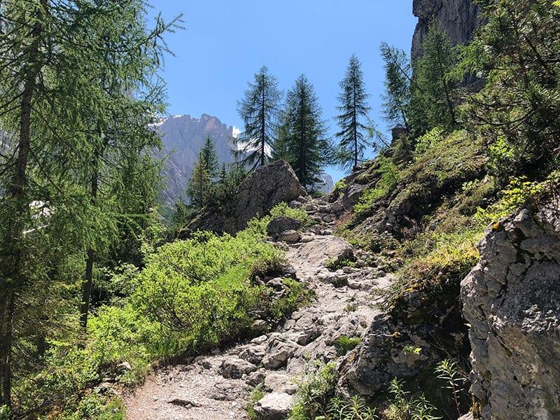 steil ansteigender Bergwanderweg