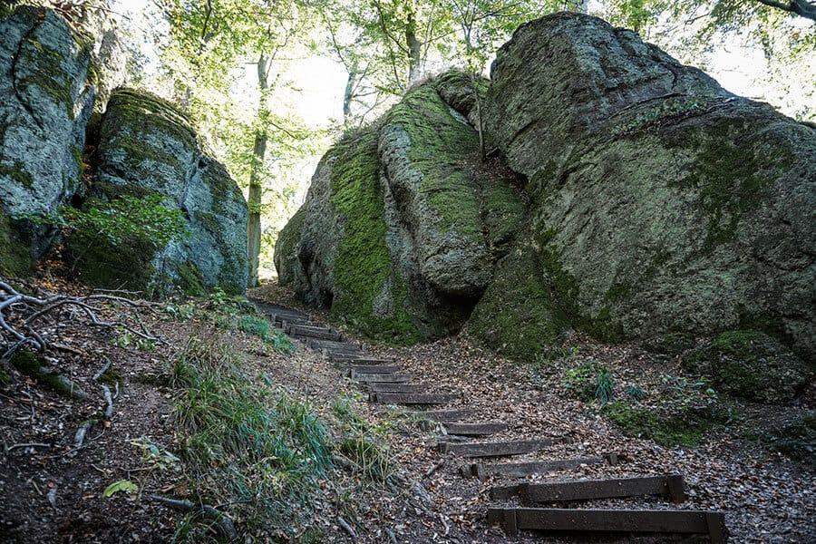 Schluchtenwanderung im Thüringer Wald