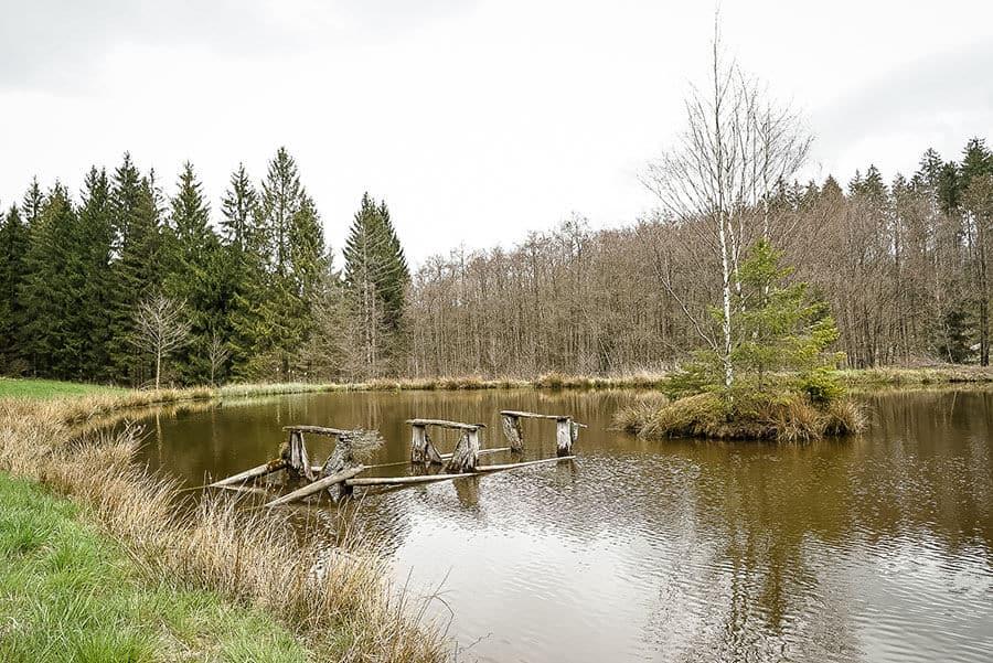 kleiner Teich mit zerfallenem Steg