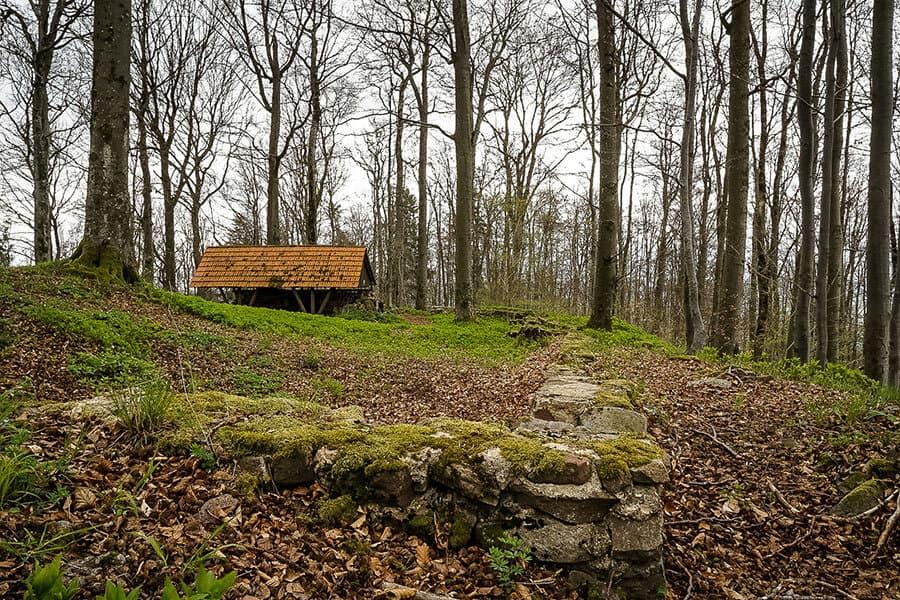 Zur Ruine Eberstein auf dem Tannfölsch
