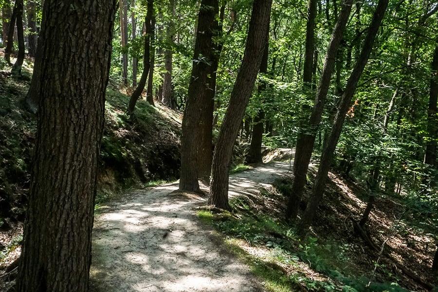 Wanderweg entlang des Mühlgraben