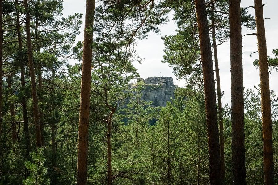 Am Regensteinblick mit Blick auf die Ruine Regenstein