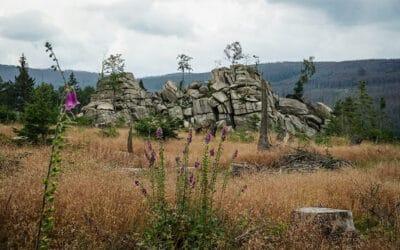 Von Elend zu den Granitklippen am Barenberg