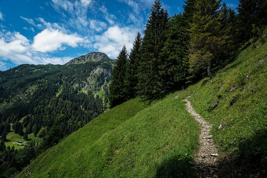 schmaler Bergpfad im Anstieg